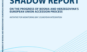 Shadow_Report-300x180