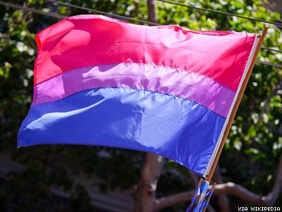 Bisexual-Flag-x400